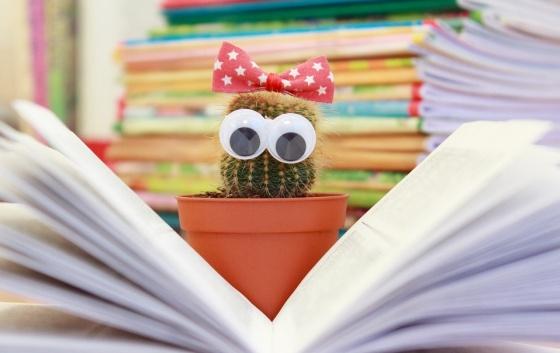 Kniha a čítanie