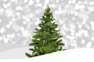 Christmass tree Vianočný stromček