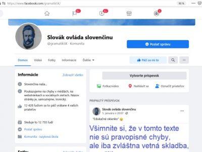Slovák ovláda slovenčinu